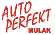 logo NAPRAWA VW, AUDI, SEAT, SKODA, MERCEDES, BMW, OPEL, FORD W LUBLIN